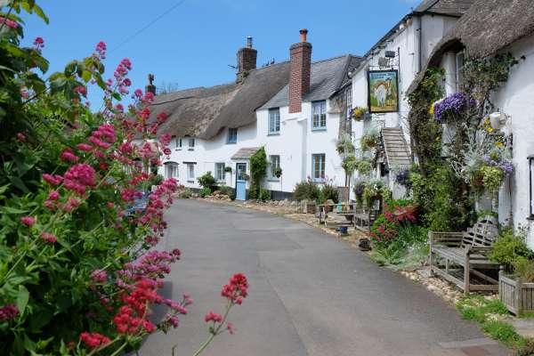 Stokenham Village