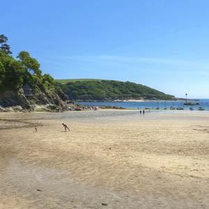 North Sands Beach Beaches Near Salcombe South Hams