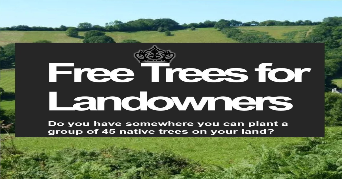 DCC are offering free trees to landowners to celebrate the Queen's platinum jubilee