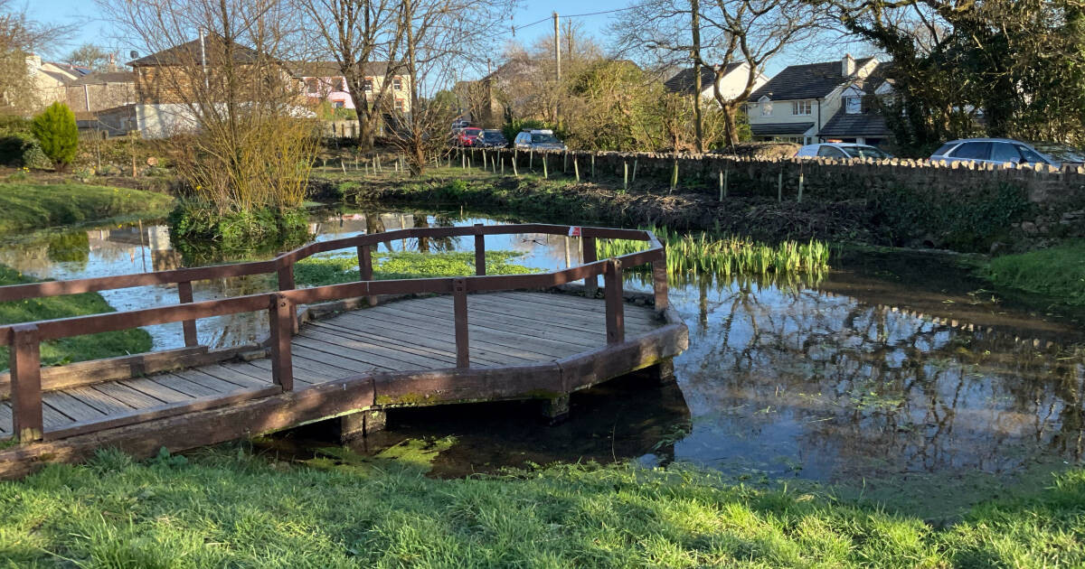 Residents' ideas shape improvements to The Spinney