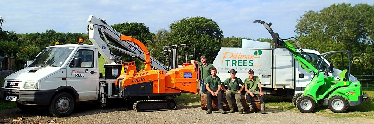 Pittman Trees - Tree Surgeons & Forestry Contractors - Tree Surgeons