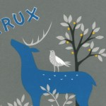 Crux Craft Fair