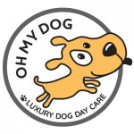 Oh My Dog - Bespoke daycare Totnes