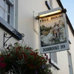 The Dodbrooke Inn - Pub - Kingsbridge