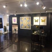 The Salcombe Decorating Company
