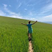 South Hams SUP WALK Adventures