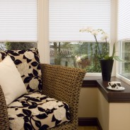 Carolina Blinds