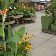heryl Garden Centre 09 197