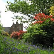 Lukesland Gardens