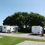 Parkland Caravan & Camping Site Kingsbridge