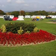 Pennymoor Caravan & Camping Park