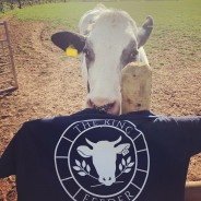 The Ring Feeder - TShirt with cow
