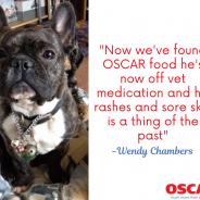 Oscar Pet Foods - Ivybridge