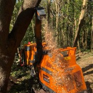 Dart Forest Trees - Wood Chipping Machine