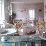 The only vegetarian café in Kingsbridge