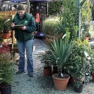 Gardentime Garden Centre - Dartmouth