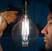 Devon Moths by Andre Daniel - The Moth Man