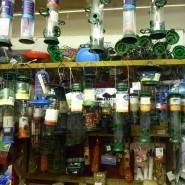 Kingsbridge Pet and Garden Supplies