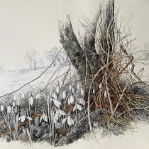 Apple's Tree' - Rosie Sanders -Mixed media drawing - £5,500