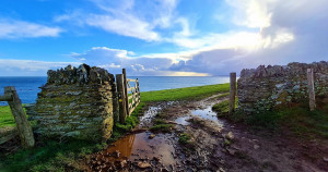 SHDC announce photography competition winner
