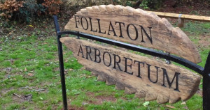 25 year anniversary of Follaton Arboretum sees improvements for both wildlife and people