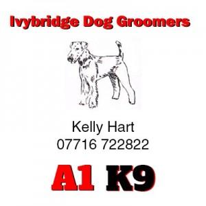 A1K9 Ivybridge dog groomers