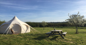 Pop-Up Campsites on private land: South Hams District Council explains what is and isn't allowed
