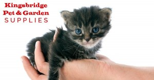 Kingsbridge Garden Supplies