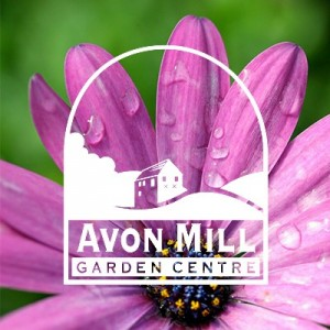 Avon Mill Garden centre