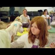 Simply Soulful Goat Yoga