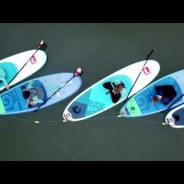 Simply Soulful SUP Yoga